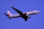 kuro2059さんが、新千歳空港で撮影した日本航空 737-846の航空フォト(写真)