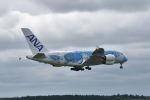 ワイエスさんが、成田国際空港で撮影した全日空 A380-841の航空フォト(写真)