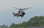 Dojalanaさんが、函館空港で撮影した朝日航洋 AS332L1 Super Pumaの航空フォト(写真)