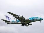 kikiさんが、成田国際空港で撮影した全日空 A380-841の航空フォト(写真)