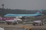 神宮寺ももさんが、成田国際空港で撮影した大韓航空 747-8B5F/SCDの航空フォト(写真)
