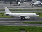 チャレンジャーさんが、羽田空港で撮影した中国企業所有 A319-133CJの航空フォト(写真)