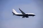 レドームさんが、羽田空港で撮影したアメリカ企業所有 737-7JR BBJの航空フォト(写真)