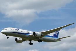 Sharp Fukudaさんが、ブリュッセル国際空港で撮影した全日空 787-9の航空フォト(飛行機 写真・画像)