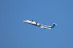 kaz787さんが、伊丹空港で撮影したANAウイングス DHC-8-402Q Dash 8の航空フォト(写真)