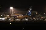 ゆう改めてさんが、熊本空港で撮影した全日空 787-8 Dreamlinerの航空フォト(写真)