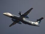むらさめさんが、新千歳空港で撮影したオーロラ DHC-8-402Q Dash 8の航空フォト(写真)