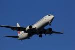 VFRさんが、羽田空港で撮影した日本航空 737-846の航空フォト(写真)