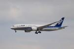 KAZFLYERさんが、成田国際空港で撮影した全日空 787-8 Dreamlinerの航空フォト(写真)