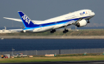 CL&CLさんが、羽田空港で撮影した全日空 787-8 Dreamlinerの航空フォト(写真)