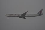 神宮寺ももさんが、成田国際空港で撮影したカタール航空 777-3DZ/ERの航空フォト(写真)