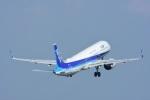masatakaさんが、鹿児島空港で撮影した全日空 A321-272Nの航空フォト(写真)