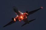 enough60さんが、伊丹空港で撮影した日本航空 767-346/ERの航空フォト(写真)