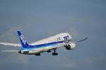 HS888さんが、鹿児島空港で撮影した全日空 787-8 Dreamlinerの航空フォト(写真)