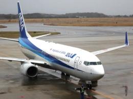 Hiro-hiroさんが、米子空港で撮影した全日空 737-881の航空フォト(写真)