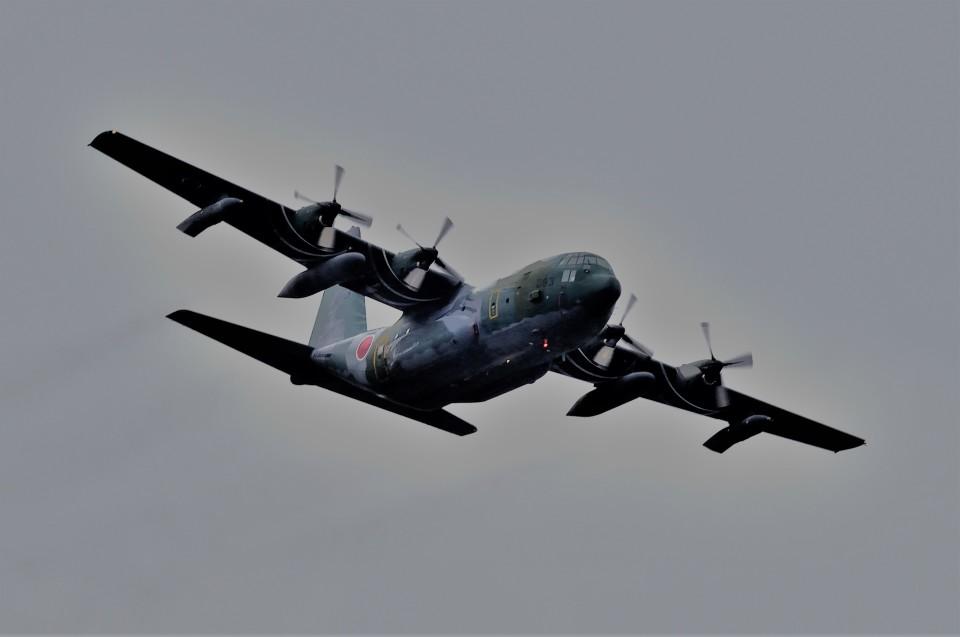 T.Sazenさんの航空自衛隊 Lockheed C-130 Hercules (95-1083) 航空フォト