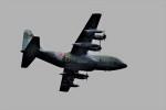 T.Sazenさんが、伊丹空港で撮影した航空自衛隊 C-130H Herculesの航空フォト(写真)