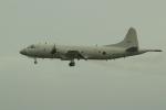 OMAさんが、那覇空港で撮影した海上自衛隊 P-3Cの航空フォト(写真)
