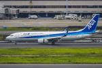 mameshibaさんが、羽田空港で撮影した全日空 737-8ALの航空フォト(写真)