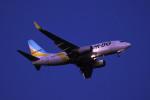 kuro2059さんが、新千歳空港で撮影したAIR DO 737-781の航空フォト(飛行機 写真・画像)