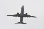 kuro2059さんが、台湾桃園国際空港で撮影したチャイナエアライン 737-809の航空フォト(写真)