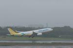 ぷぅぷぅまるさんが、成田国際空港で撮影したセブパシフィック航空 A330-343Xの航空フォト(写真)