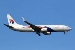 航空フォト:9M-MLI マレーシア航空 737-800