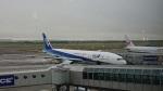 ゆいちゃん♥さんが、新千歳空港で撮影した全日空の航空フォト(飛行機 写真・画像)