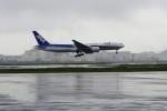 mich_stoneさんが、羽田空港で撮影した全日空 777-281の航空フォト(写真)