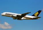 Bokuranさんが、ロンドン・ヒースロー空港で撮影したシンガポール航空 A380-841の航空フォト(写真)