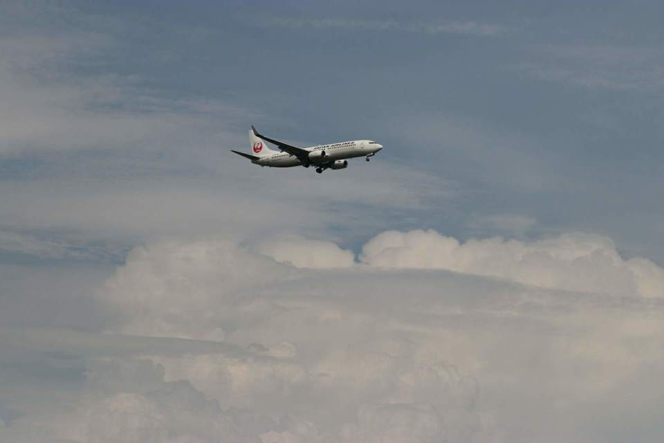 imosaさんの日本航空 Boeing 737-800 (JA326J) 航空フォト