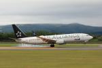syo12さんが、函館空港で撮影した全日空 737-881の航空フォト(写真)
