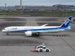 FT51ANさんが、羽田空港で撮影した全日空 787-9の航空フォト(写真)