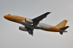 amagoさんが、関西国際空港で撮影したスクート A320-232の航空フォト(写真)
