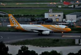 mojioさんが、成田国際空港で撮影したスクート A320-232の航空フォト(写真)
