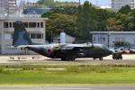 鈴鹿@風さんが、名古屋飛行場で撮影した航空自衛隊 C-130H Herculesの航空フォト(写真)