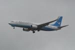 kuro2059さんが、台湾桃園国際空港で撮影した厦門航空 737-86Nの航空フォト(写真)
