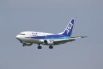 ANA744Foreverさんが、福岡空港で撮影したANAウイングス 737-54Kの航空フォト(写真)