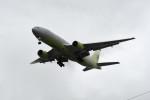 kuro2059さんが、台湾桃園国際空港で撮影したジンエアー 777-2B5/ERの航空フォト(飛行機 写真・画像)