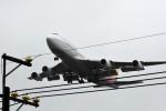 kuro2059さんが、台湾桃園国際空港で撮影したアシアナ航空 747-48Eの航空フォト(写真)