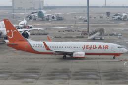 SFJ_capさんが、中部国際空港で撮影したチェジュ航空 737-8ALの航空フォト(飛行機 写真・画像)