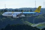 mojioさんが、成田国際空港で撮影したロイヤルブルネイ航空 A320-251Nの航空フォト(飛行機 写真・画像)