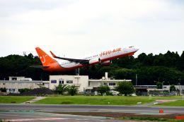 まいけるさんが、成田国際空港で撮影したチェジュ航空 737-8ALの航空フォト(飛行機 写真・画像)