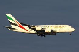 hiroki_h2さんが、スワンナプーム国際空港で撮影したエミレーツ航空 A380-842の航空フォト(飛行機 写真・画像)