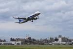 N村さんが、松山空港で撮影した全日空 A321-211の航空フォト(写真)