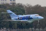 maverickさんが、入間飛行場で撮影した航空自衛隊 U-125A(Hawker 800)の航空フォト(写真)