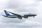 ワイエスさんが、成田国際空港で撮影した全日空 787-8 Dreamlinerの航空フォト(写真)