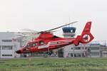 KAZFLYERさんが、東京ヘリポートで撮影した東京消防庁航空隊 AS365N3 Dauphin 2の航空フォト(写真)