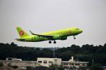 T.Sazenさんが、成田国際空港で撮影したS7航空 A320-214の航空フォト(写真)