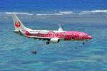 HISAHIさんが、新石垣空港で撮影した日本トランスオーシャン航空 737-8Q3の航空フォト(写真)